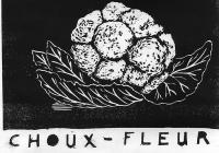 14_choux-fleur-copie.jpg